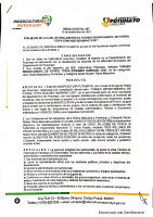 REGLAMENTO AL TORNEO DEPARTAMENTAL DE FÚTBOL